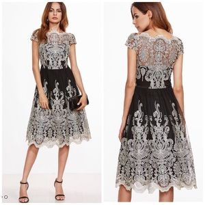 Shein Lace Mesh Fit and Flare Formal Party Dress